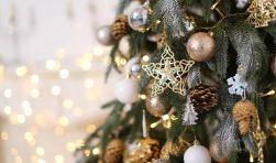 Szigetközi Karácsonyi Pihenés - Orchidea Hotel Lipót
